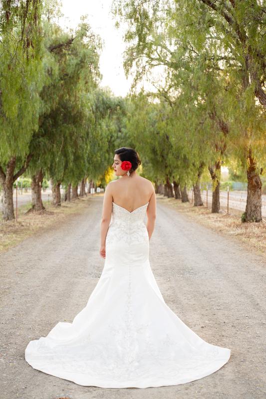 Diana_Houston_Wedding_032